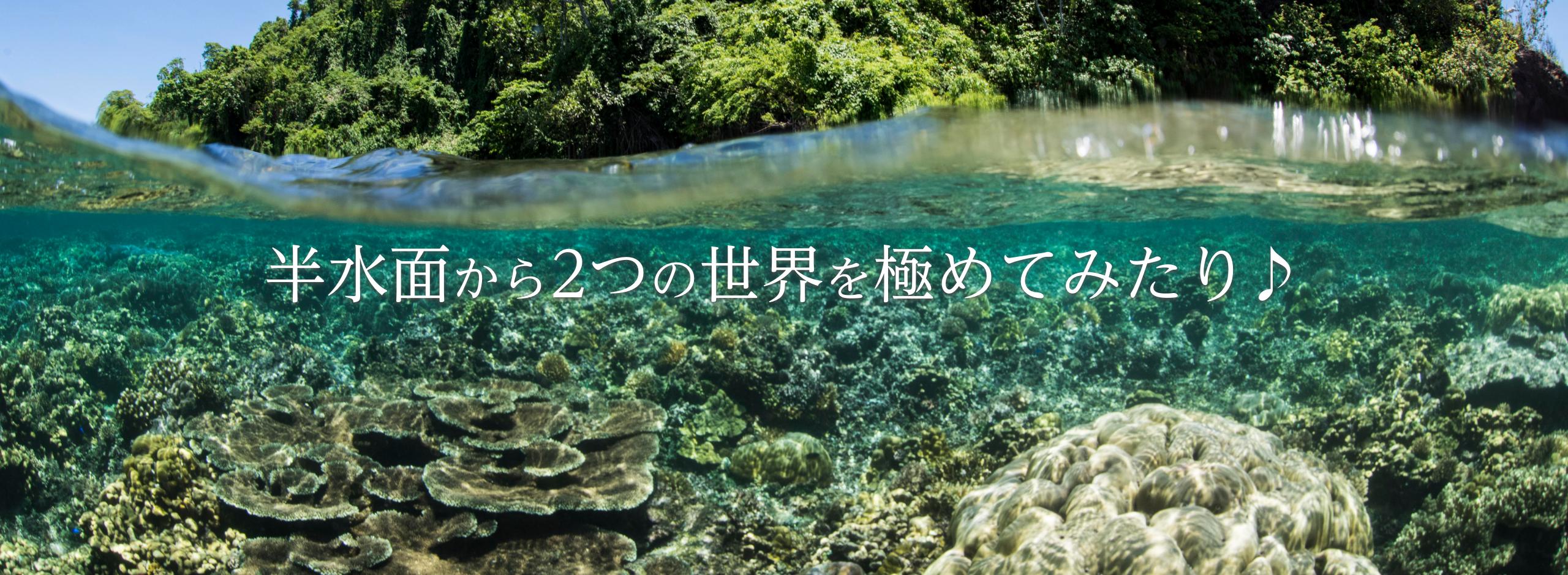 Answer_Main-visual_pc