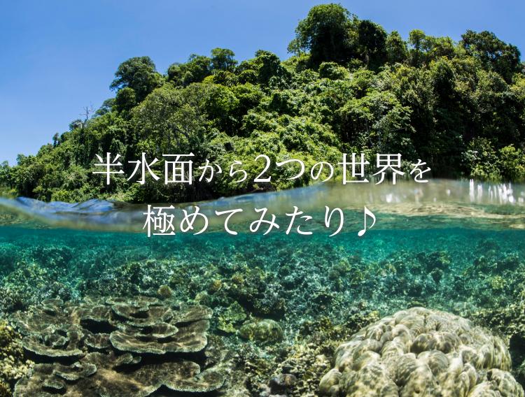 Answer_Main-visual_sp