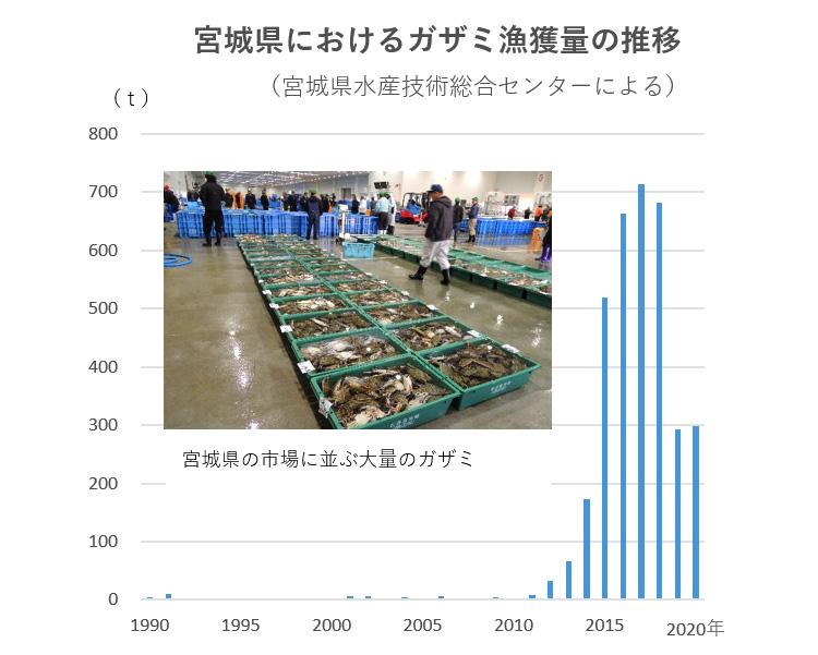 宮城県におけるガザミ漁獲量の推移